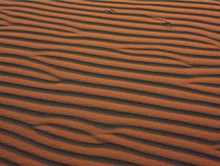 Noc uprostřed písečných dun
