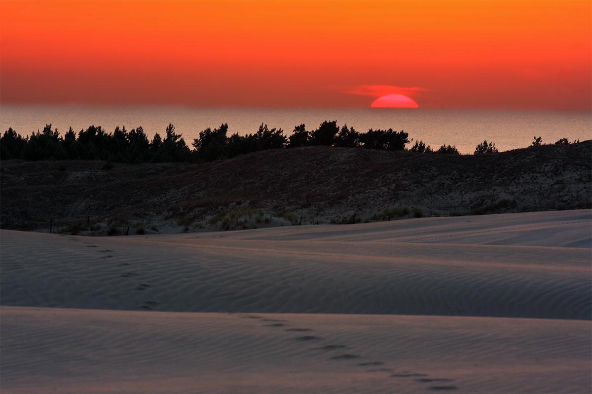 Písečné duny Polsko