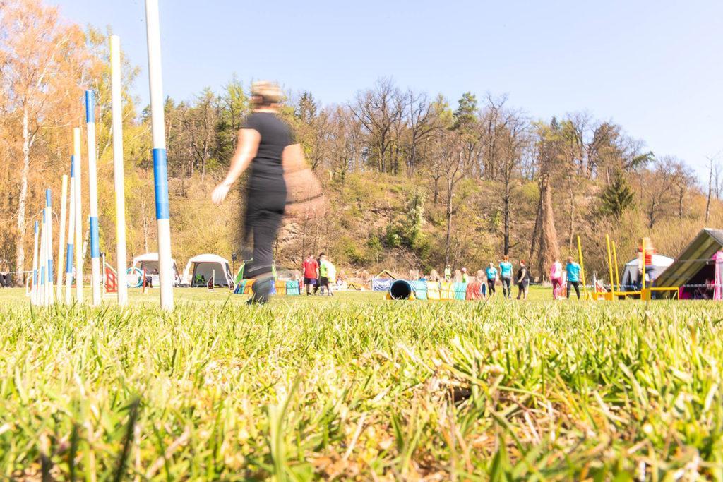 Prohlídka agility parkuru na závodech Rokycanská skočná