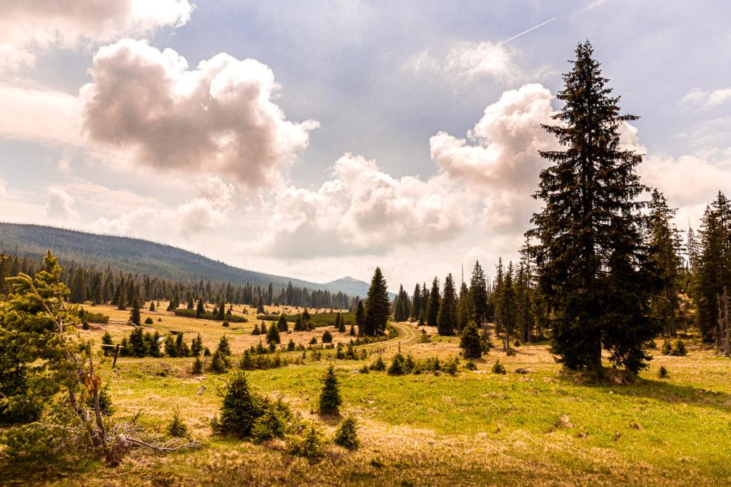 Výlet na Březník ze šumavské Modravy