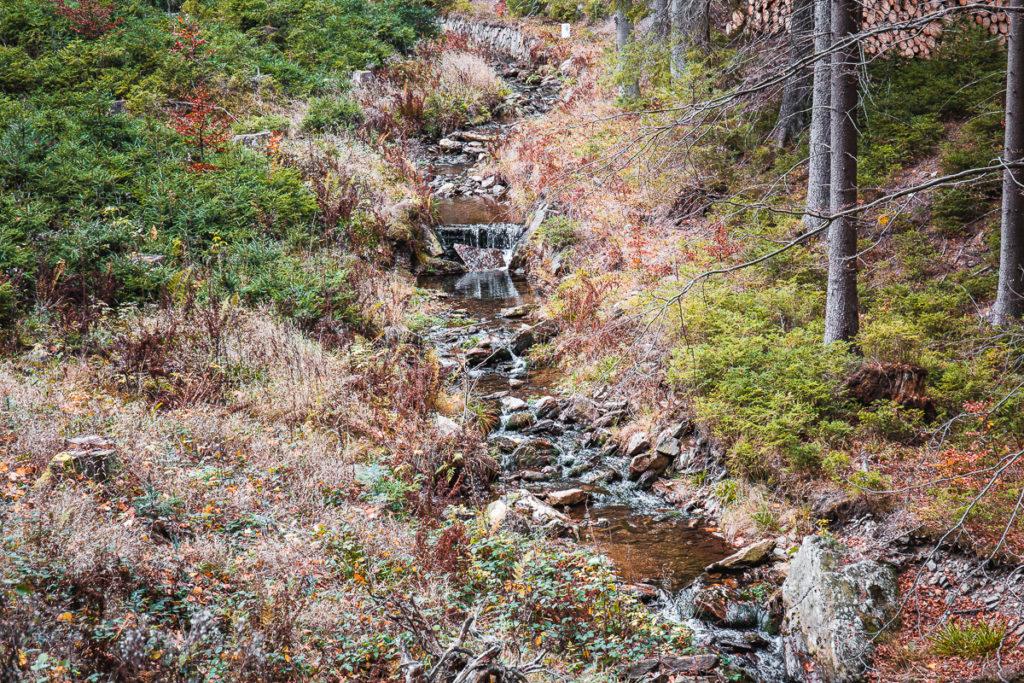 Krušné hory Komáří potok