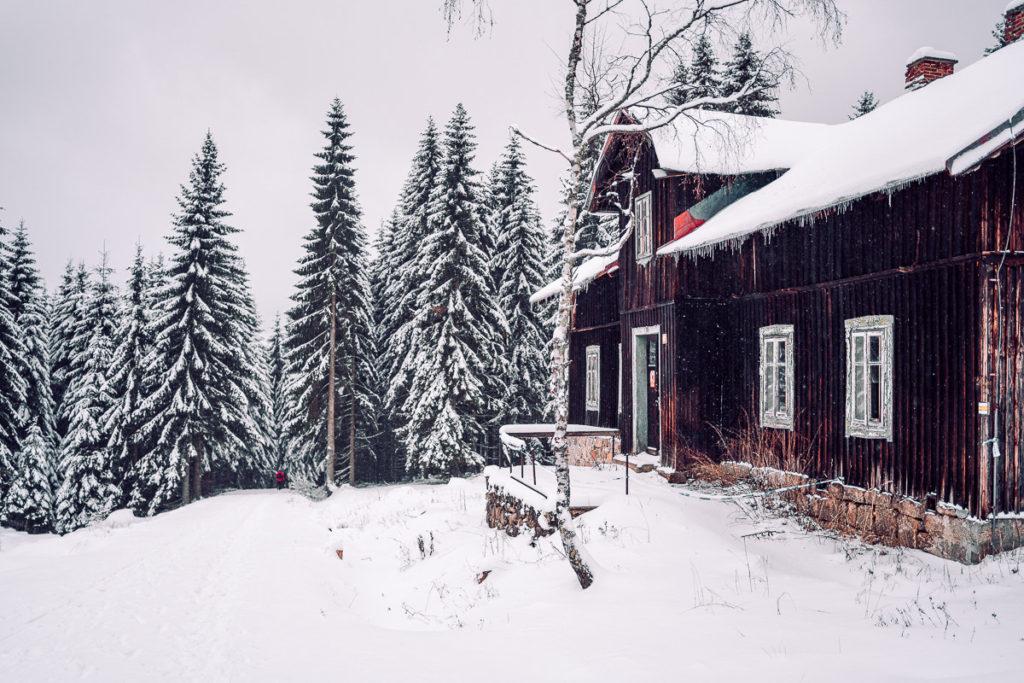 Jizerské hory se psem - Mariánskohorské boudy
