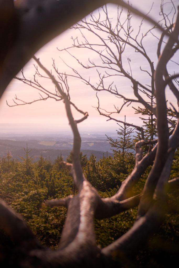 Velká Deštná - Nejvyšší vrchol Orlických hor - Greenmind.cz - Cestování se psem