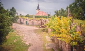 Vinné sklepy Vrbice – moravský Hobitín
